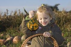 Childr on pumpkin field Stock Image