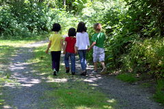 Children. Four little kids walking down a country road holding hands. Backs to the camera, walking away. Speckled sunshine Stock Photography