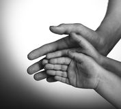 Children and adults hands. On a white background Stock Images