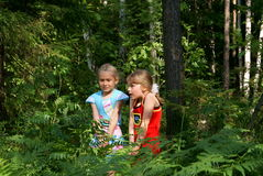 Children are afraid in wood. In the summer in park two girlfriends were frightened of someone Royalty Free Stock Photo