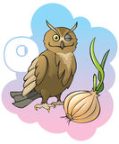 Children alphabet: letter O. Series of Children alphabet: letter O, owl and onion, cartoon vector illustration Royalty Free Stock Photography