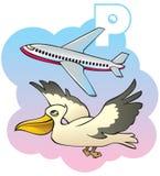 Children alphabet: letter P. Series of Children alphabet: letter P, pelican and plane, cartoon vector illustration Stock Images
