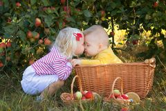 Children with apples in baskets in the orchard Stock Photo