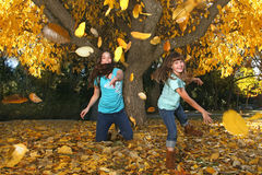 Children in an Autumn Forest in the Fall Royalty Free Stock Photo