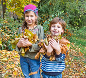 Children in autumn forest. Play with  fallen down leaf Royalty Free Stock Photos
