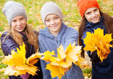 Children at autumn Royalty Free Stock Images