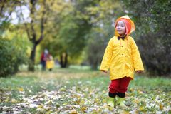 Children in the autumn park walk stock images