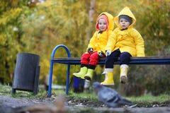 Children in the autumn park walk royalty free stock photos