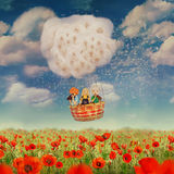 Children in a balloon,Red poppies field Royalty Free Stock Image