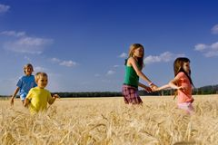 Children in Barley Field Stock Image