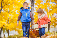 Children with basket in the autumn park Stock Images