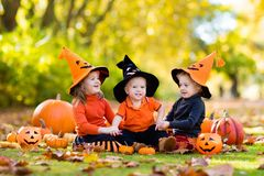 Kids with pumpkins in Halloween costumes Royalty Free Stock Photos