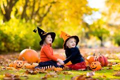 Kids with pumpkins in Halloween costumes Royalty Free Stock Images