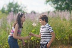 Children blowing dandelion royalty free stock image