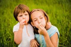 Children blowing whistle Royalty Free Stock Image