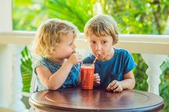 Children boy and girl drink orange smoothie from papaya stock photos