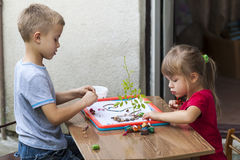 Children boy and girl playing together Royalty Free Stock Image