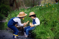 Children, playing on little river with ducklings Stock Photo