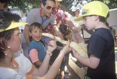Children with a Burmese albino python snake Royalty Free Stock Image