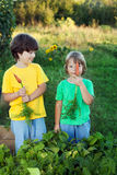 Children with a carrot in garden. royalty free stock photo