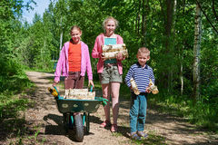 Children carry firewood from forest Stock Images