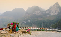 Children carry grass to home in Hagiang, Vietnam.  Stock Photography