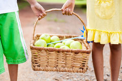 Children carrying apples Stock Photos