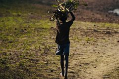 Stop Child Labour - Stock Photograph royalty free stock photo