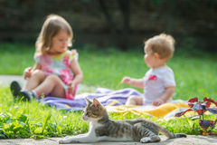 Children and cat Stock Photography