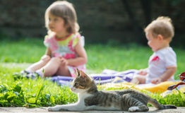 Children and cat Stock Photos