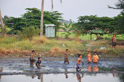 Children catch fish in mud of pond at Countryside Nonthaburi Thailand Stock Photos