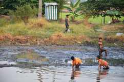 Children catch fish in mud of pond at Countryside Nonthaburi Thailand Royalty Free Stock Photography