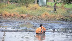 Children catch fish in mud of pond at Countryside Nonthaburi Thailand. Mud is a mixture of water and any combination of soil, silt, and clay, and usually forms stock video footage