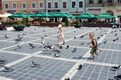 Children chasing pigeons Royalty Free Stock Photography