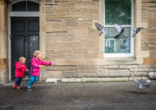 Free Children Chasing Pigeons Stock Images - 78437814