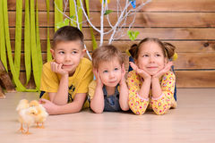 Children with chickens indoors Royalty Free Stock Photos
