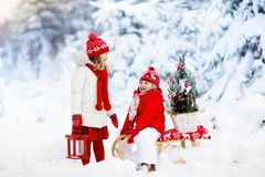 Children with Christmas tree. Snow winter fun for kids. Stock Photo