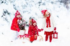 Children with Christmas tree. Snow winter fun for kids. Royalty Free Stock Photo
