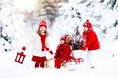 Children with Christmas tree. Snow winter fun for kids. Royalty Free Stock Photography