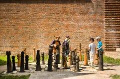 Children cieszy się grę szachy Obrazy Stock