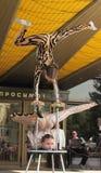 Children circus acrobats Stock Images