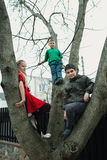 Children climb on tree. In the yard Royalty Free Stock Photo