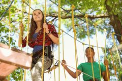 Children climbing in adventure park. Summer camp royalty free stock photography