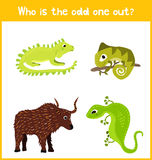Children colorful educational cartoon game puzzle page for children's books and magazines on the theme of extra animal find cute a. Mong cold-blooded reptiles Royalty Free Stock Images
