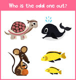 Children colorful educational cartoon game puzzle page for children's books and magazines on the theme extra find pet among Pets. Royalty Free Stock Photos