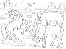 Children coloring cartoon horses grazing on meadow vector. Zentangle style. Black and white Stock Photo