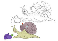 Children coloring page snail Stock Photography
