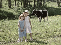 Children and cow. Two country little girls and cow in meadow Stock Photos