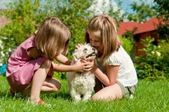 Children with dog. Small cute girls playing with her dog in garden behind family house Royalty Free Stock Image