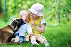 Children and dog. Girl and her little brother playing with  dog on  grass Stock Images